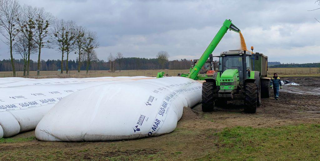 agrocentrum rękawy kukurydzy